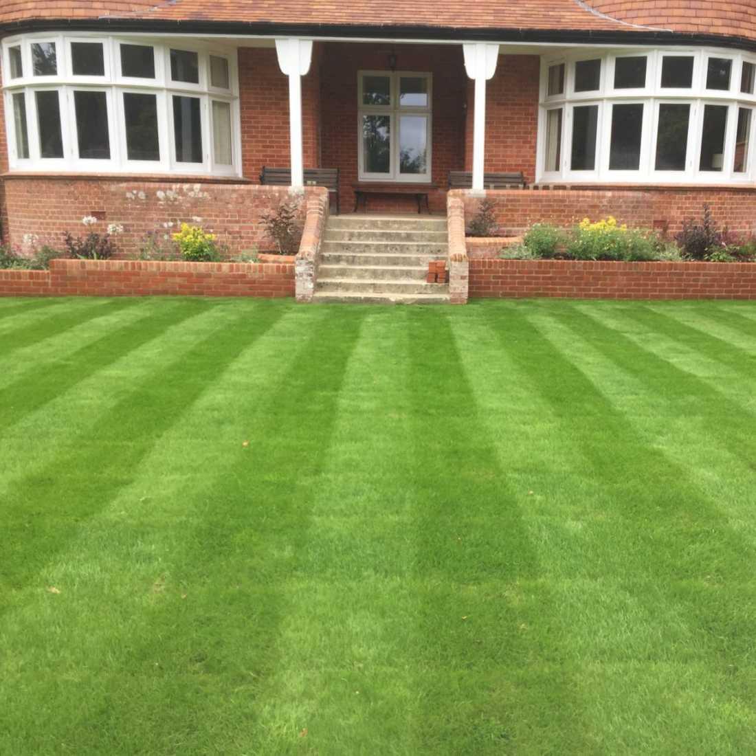 grass cutting in wimborne