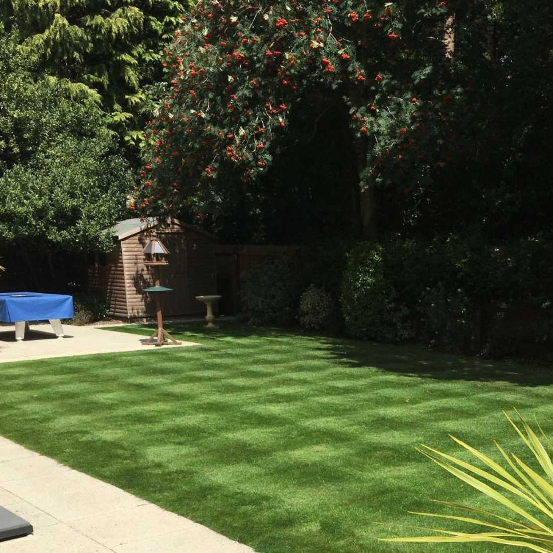 Lawn Care Poole